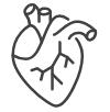 Support cardiovascular health*
